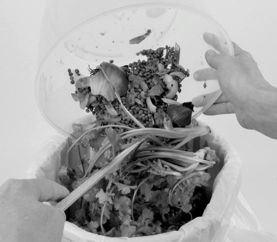 La querelle du ménage – 6. Eikoanomia (du gaspillagealimentaire)